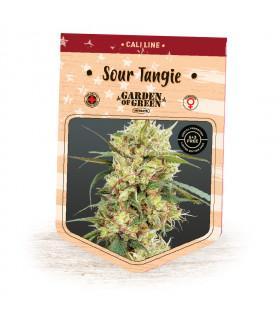 Sour Tangie (Garden of Green)