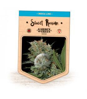 Sweet Russian (Garden of Green)